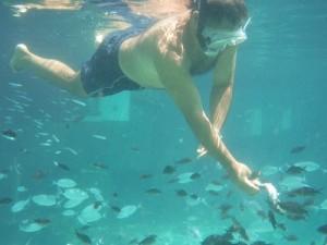 Orsa Maggiore - Pescaturismo - Parco Asinara